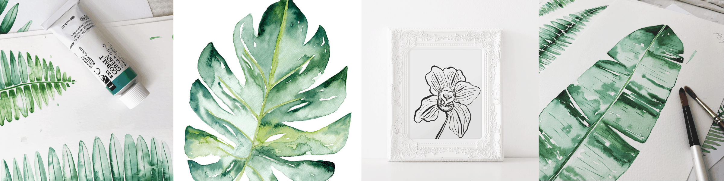 cheeseplant print in watercolor