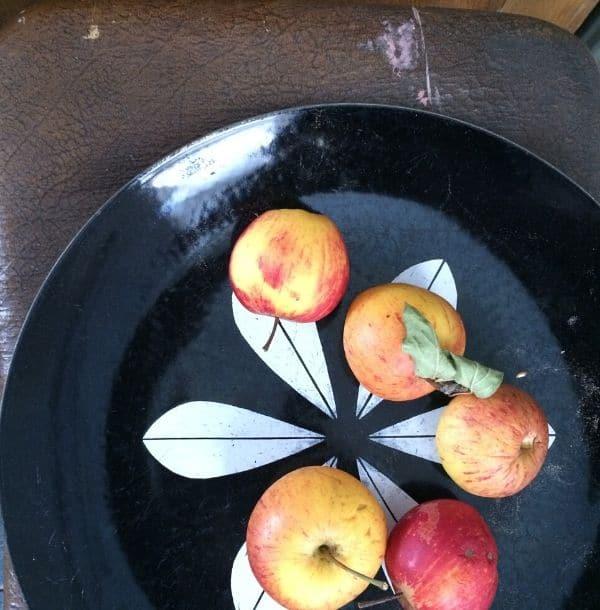 Apples on a black try vintage.