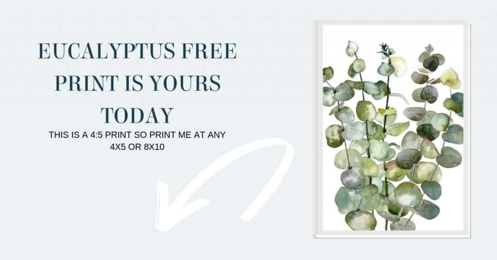 Eucalyptus free print download