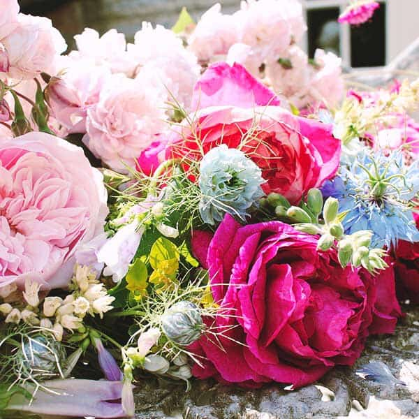 Pink roses with flowers in a bunch