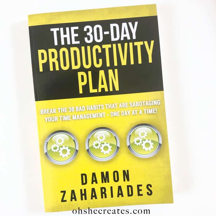 Book image of 30 day productivity plan on white background