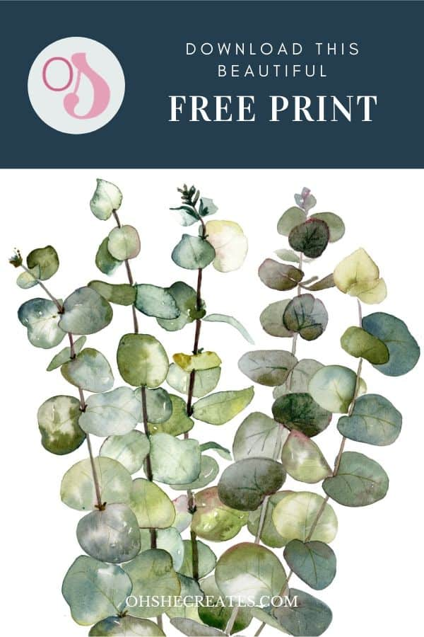 free digital botanical prints