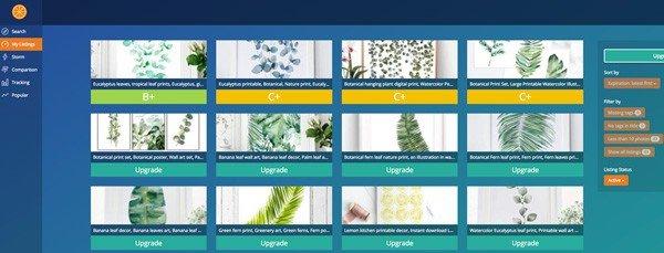Brainstorm keywords on Marmalead screenshot of listings